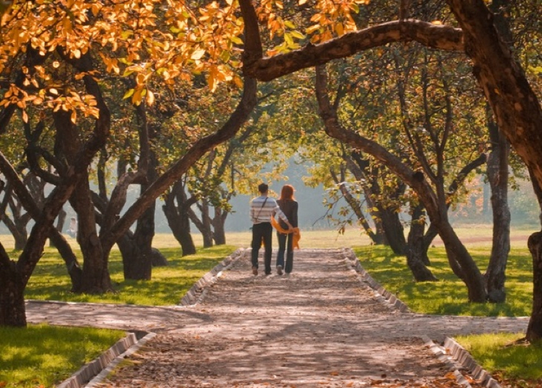 Couple walking in park in Autumn