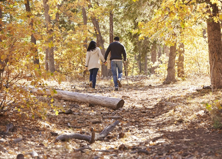 A couple walking in the forest