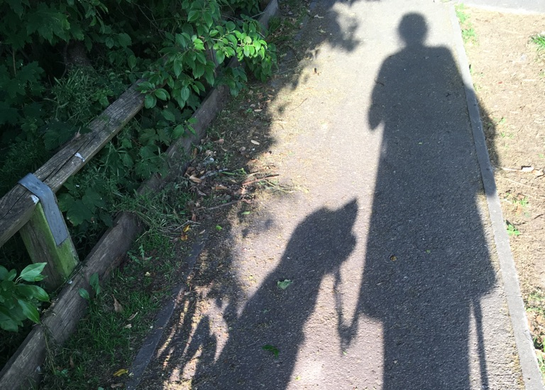Shadow of a person and a guide-dog